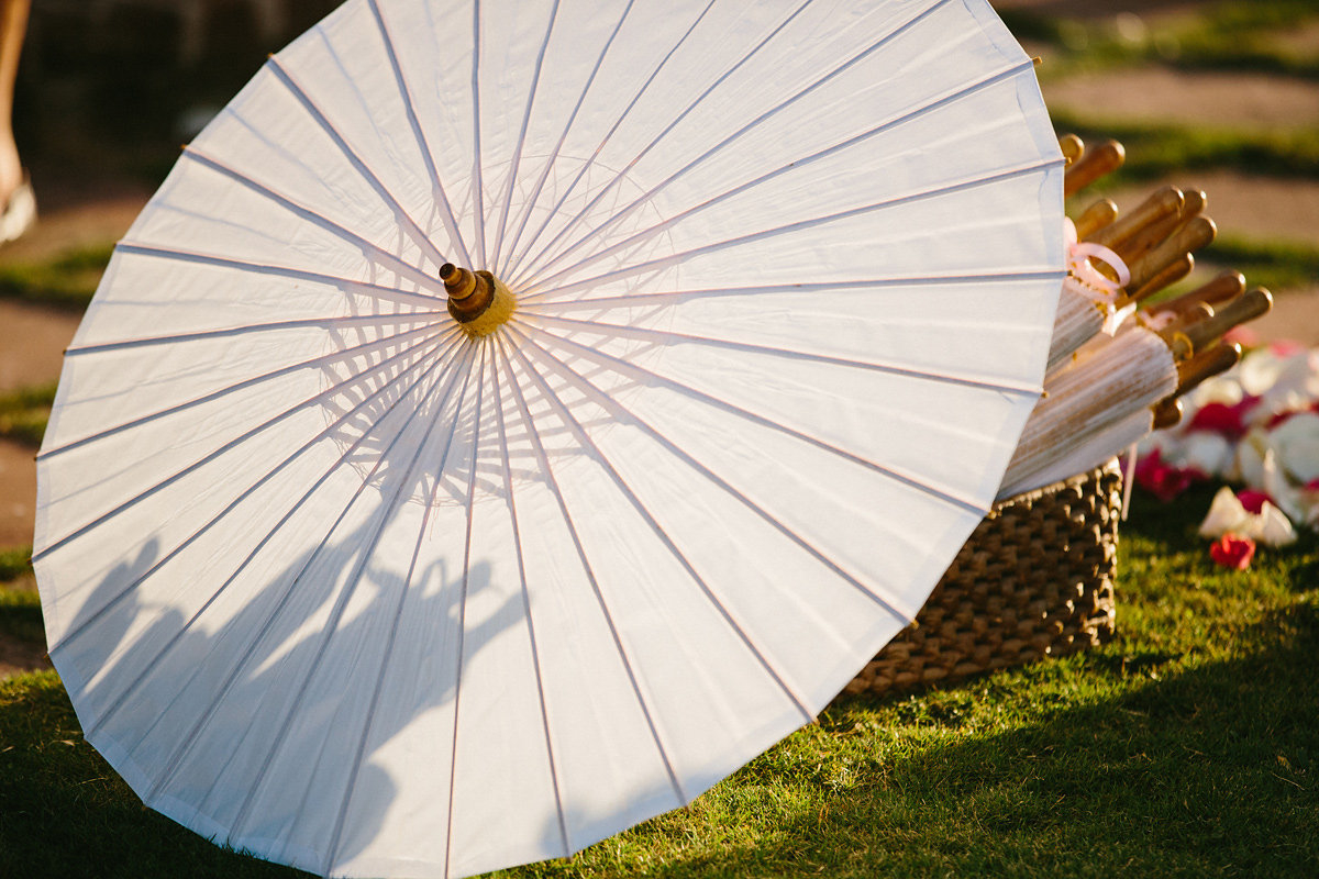 Parasol_James Christianson1