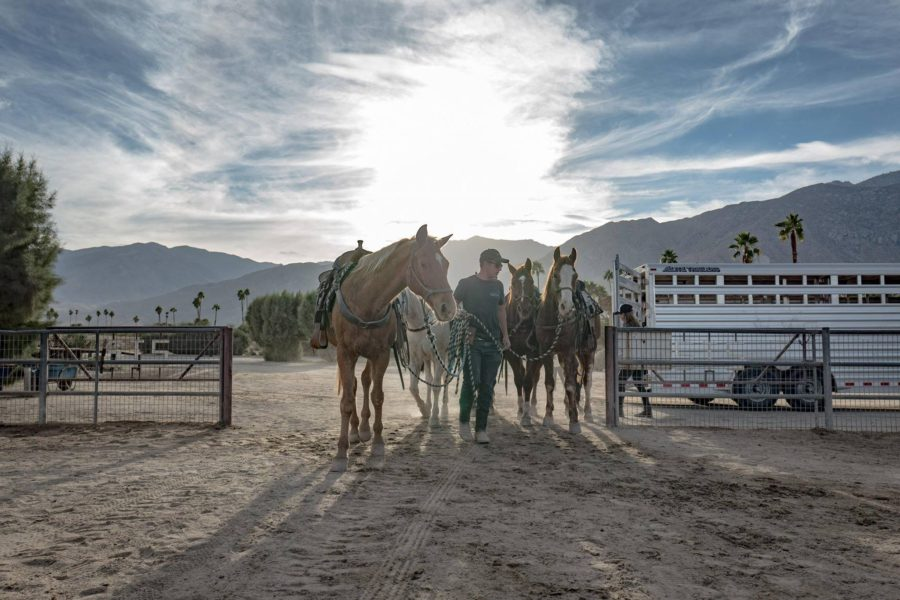 Horseback riding in Palm Springs